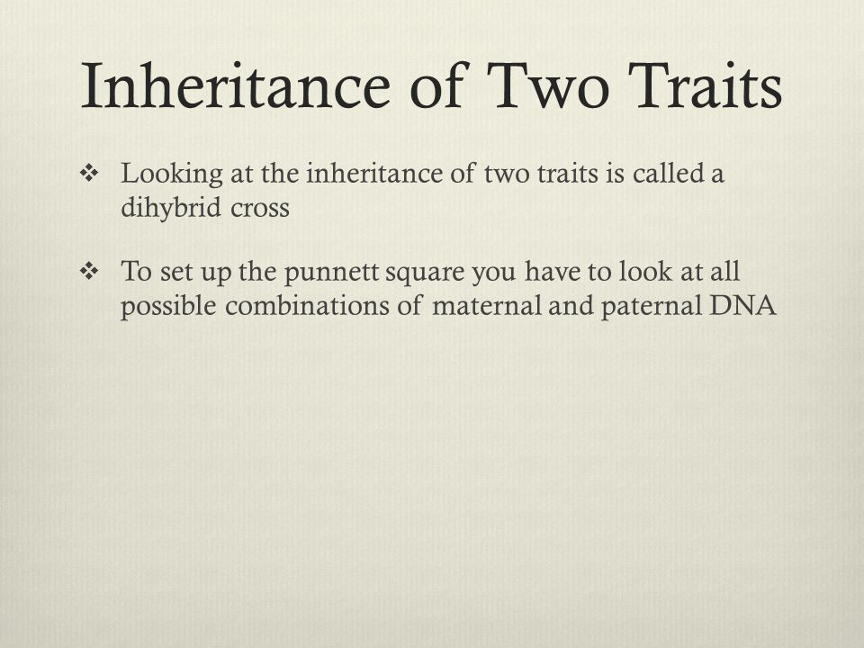 Inheritance of Two Traits  Looking at the inheritance of two traits is called a dihybrid cross  To set up the punnett square you have to look at all