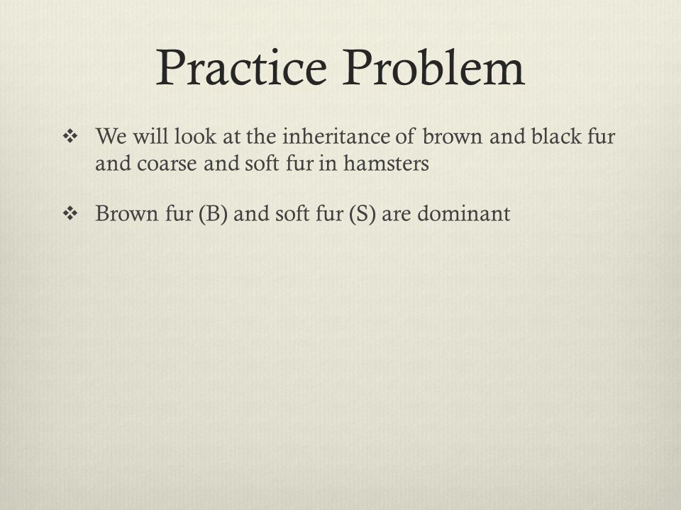 Practice Problem  We will look at the inheritance of brown and black fur and coarse and soft fur in hamsters  Brown fur (B) and soft fur (S) are dom