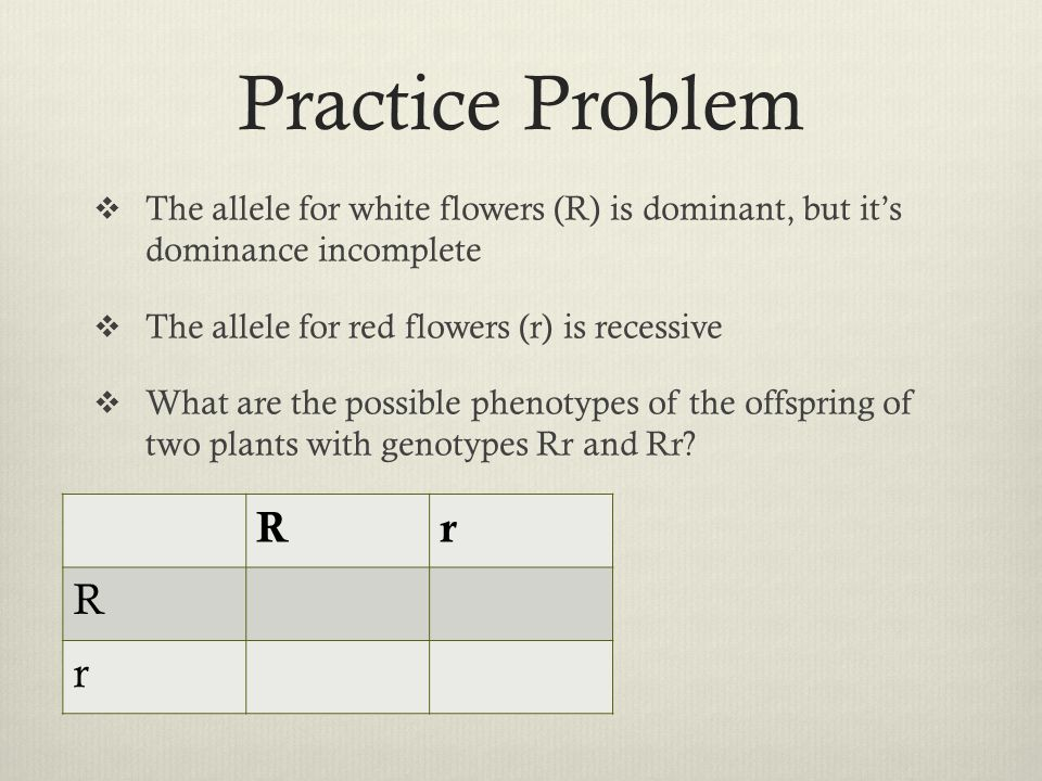 Practice Problem  The allele for white flowers (R) is dominant, but it's dominance incomplete  The allele for red flowers (r) is recessive  What ar