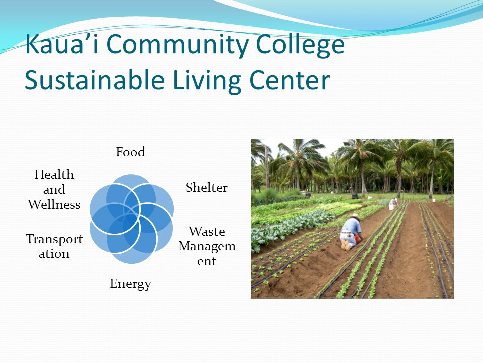 Kaua'i Community College Sustainable Living Center Food Shelter Waste Managem ent Energy Transport ation Health and Wellness