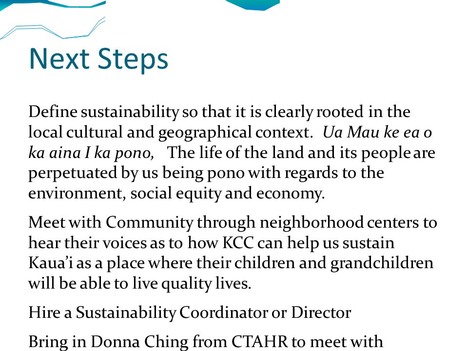 Next Steps Define sustainability so that it is clearly rooted in the local cultural and geographical context.