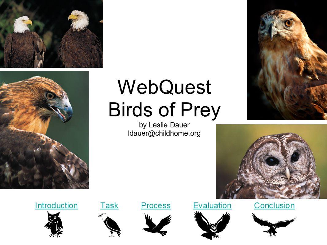 WebQuest Birds of Prey by Leslie Dauer ldauer@childhome.org