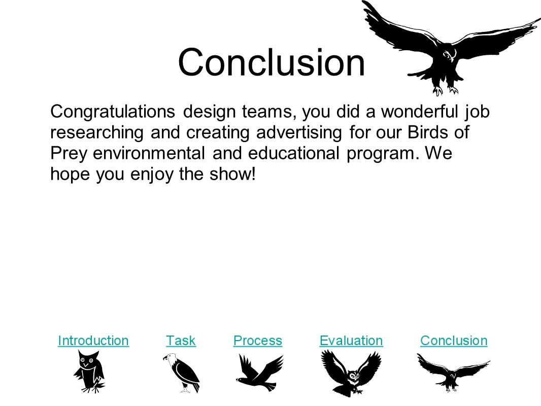 Conclusion Congratulations design teams, you did a wonderful job researching and creating advertising for our Birds of Prey environmental and educational program.