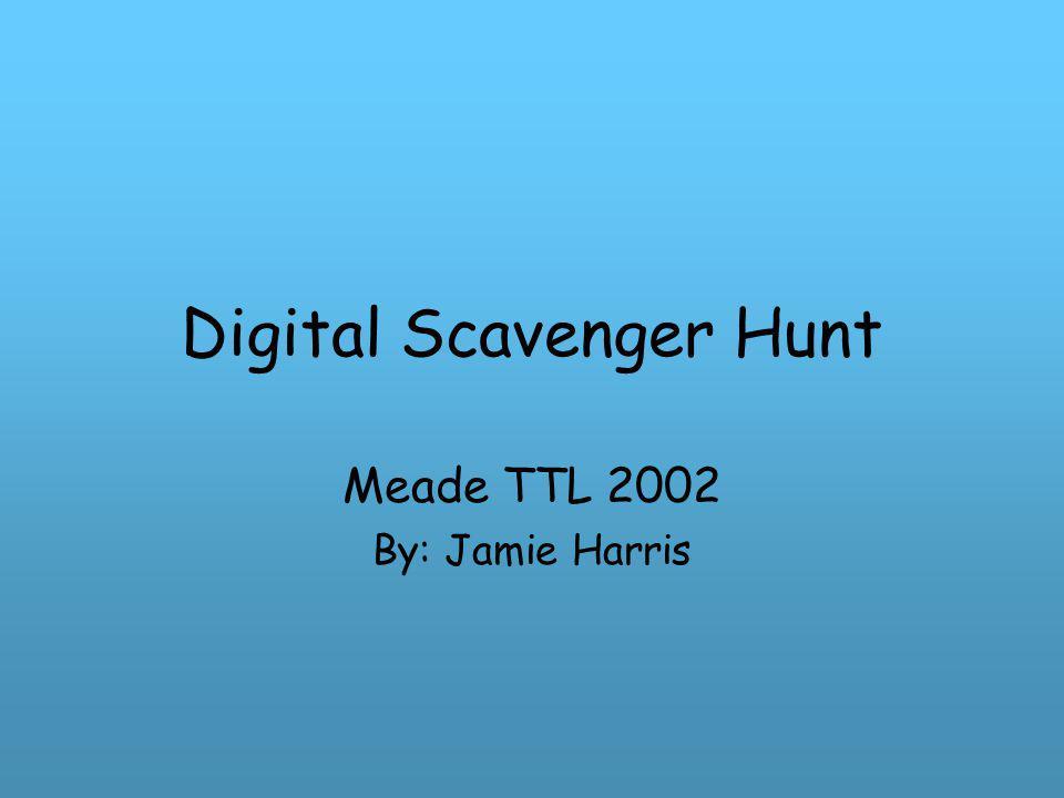 Digital Scavenger Hunt Meade TTL 2002 By: Jamie Harris