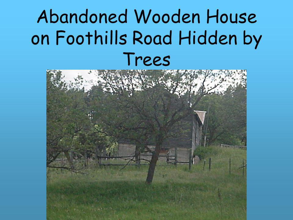 Abandoned Wooden House on Foothills Road Hidden by Trees