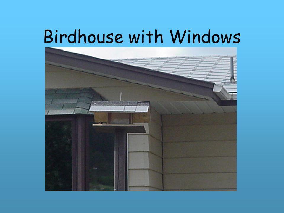 Birdhouse with Windows