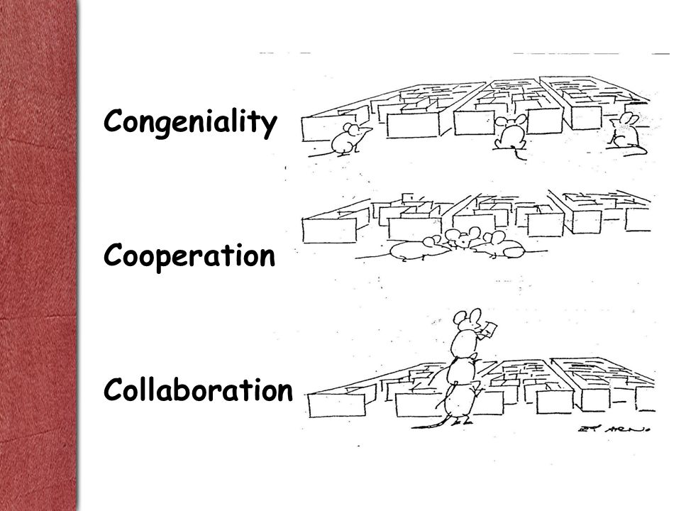 Congeniality Cooperation Collaboration