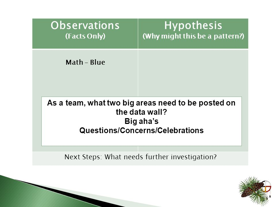 Observations (Facts Only) Hypothesis (Why might this be a pattern ) Math – Blue Next Steps: What needs further investigation.