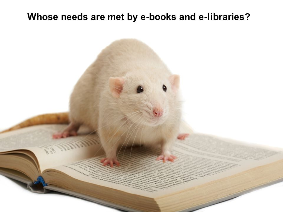 Whose needs are met by e-books and e-libraries?