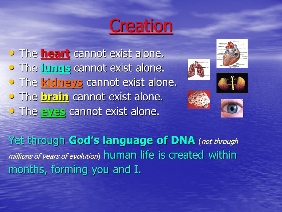 Creation Male & Female Neither male nor female exist in isolation within a species.