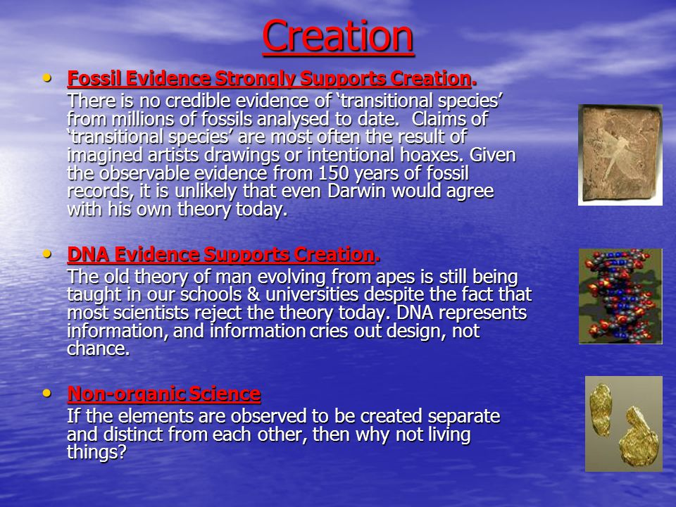 Creation Fossil Evidence Strongly Supports Creation.