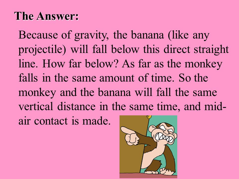 The Answer: Because of gravity, the banana (like any projectile) will fall below this direct straight line.