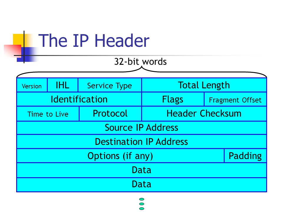 The IP Header 32-bit words Source IP Address Destination IP Address Options (if any)Padding Data Total LengthIHL Service Type Version.