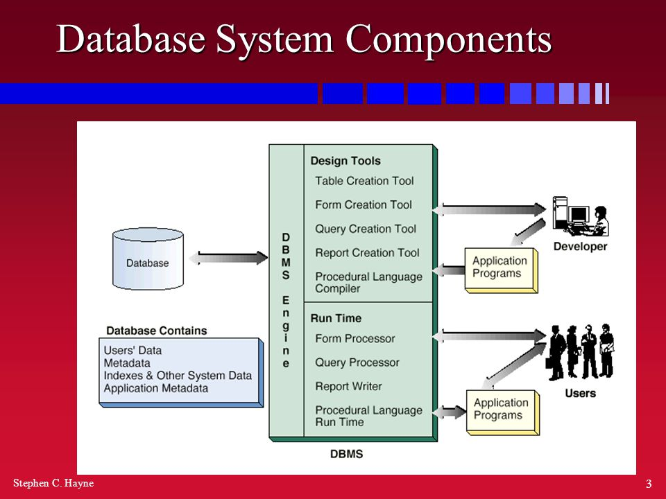 Stephen C. Hayne 3 Database System Components