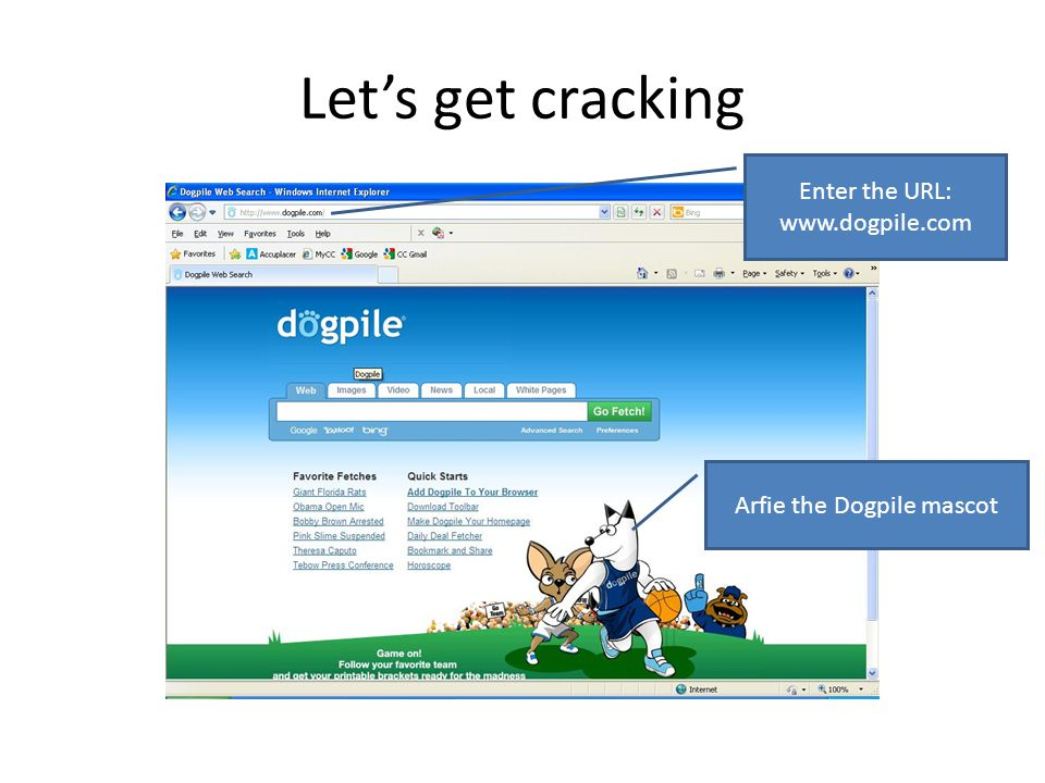 Let's get cracking Enter the URL: www.dogpile.com Arfie the Dogpile mascot