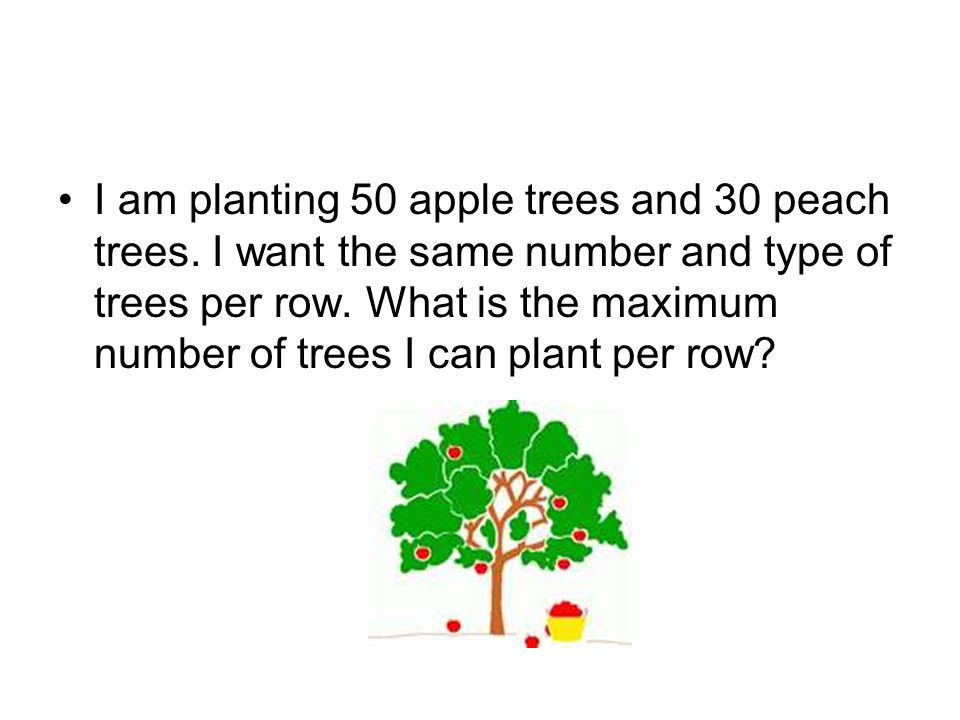 I am planting 50 apple trees and 30 peach trees. I want the same number and type of trees per row. What is the maximum number of trees I can plant per