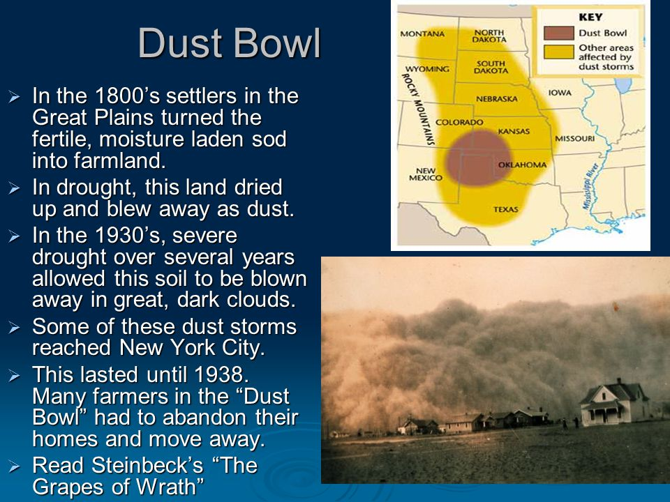 Dust Bowl  In the 1800's settlers in the Great Plains turned the fertile, moisture laden sod into farmland.
