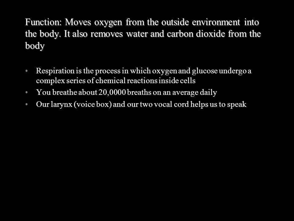 Function: Moves oxygen from the outside environment into the body. It also removes water and carbon dioxide from the body Respiration is the process i