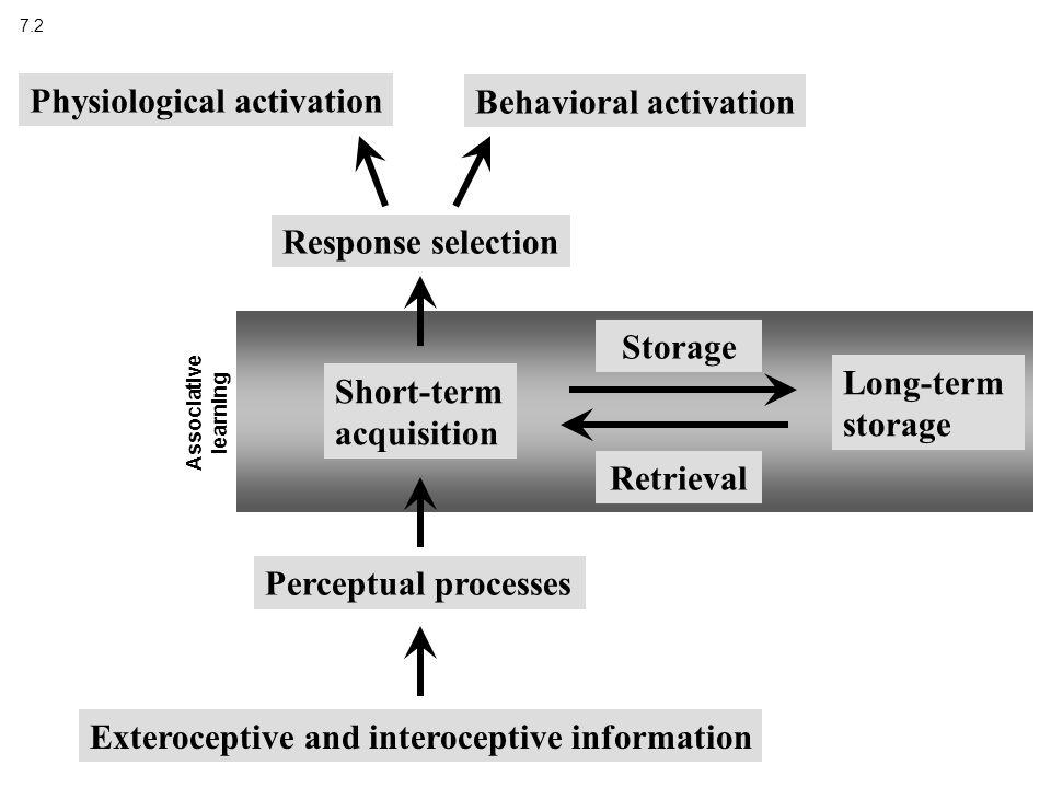 7.2 Exteroceptive and interoceptive information Perceptual processes Short-term acquisition Long-term storage Storage Response selection Physiological activation Behavioral activation Retrieval Associative learning