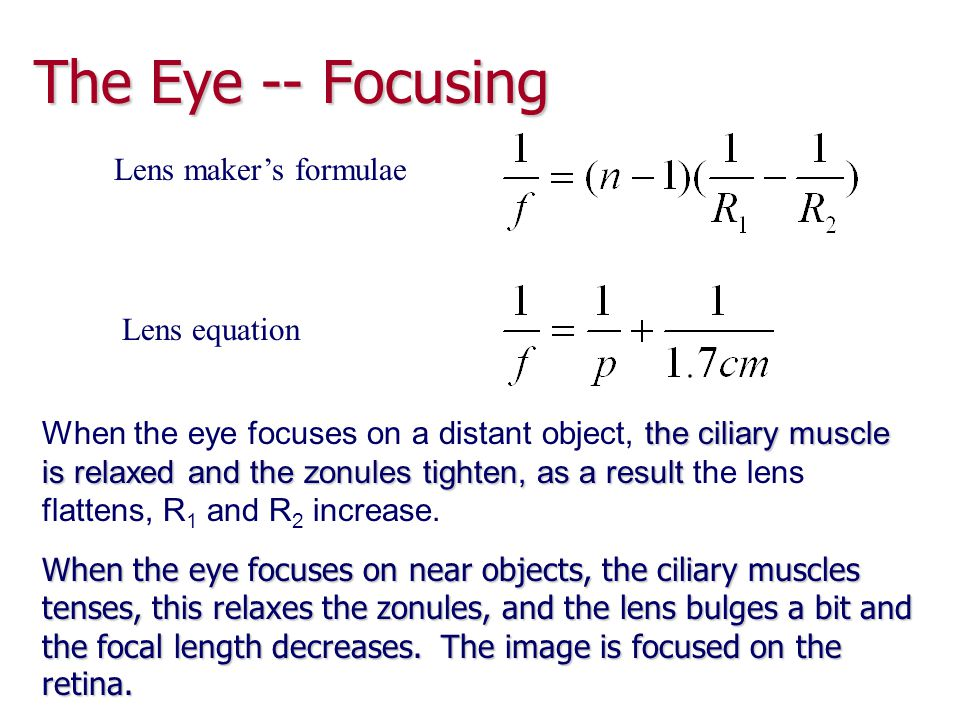 The Eye – Near and Far Points The near point is the closest distance for which the lens can accommodate to focus light on the retina The near point is the closest distance for which the lens can accommodate to focus light on the retina Typically at age 10, this is about 18 cm Typically at age 10, this is about 18 cm It increases with age It increases with age The far point of the eye represents the largest distance for which the lens of the relaxed eye can focus light on the retina The far point of the eye represents the largest distance for which the lens of the relaxed eye can focus light on the retina Normal vision has a far point of infinity Normal vision has a far point of infinity