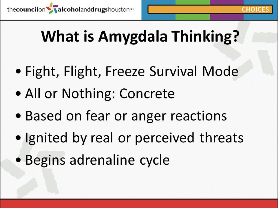 What is Amygdala Thinking.