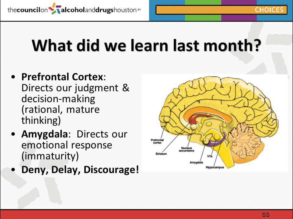 What did we learn last month? Prefrontal Cortex: Directs our judgment & decision-making (rational, mature thinking) Amygdala: Directs our emotional re