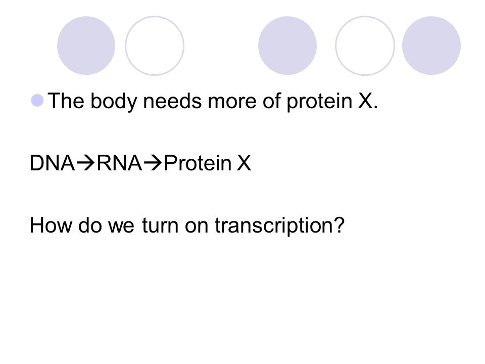 The body needs more of protein X. DNA  RNA  Protein X How do we turn on transcription