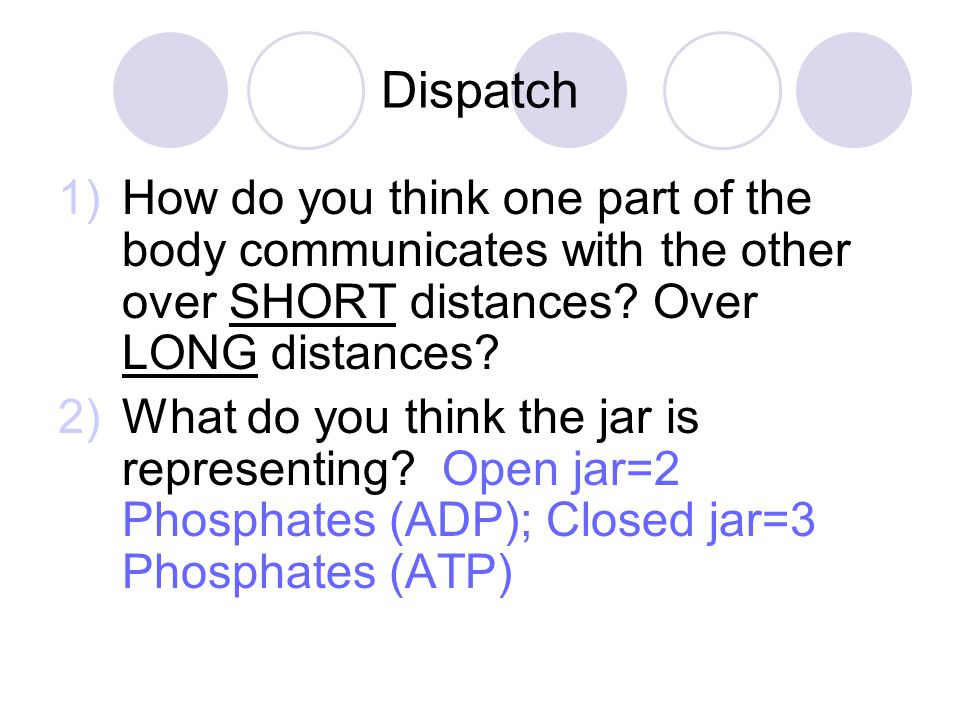 Dispatch 1)How do you think one part of the body communicates with the other over SHORT distances.