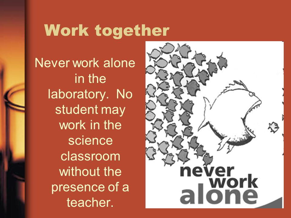 Work together Never work alone in the laboratory. No student may work in the science classroom without the presence of a teacher.