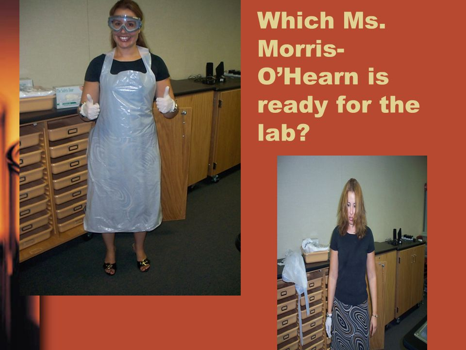 Which Ms. Morris- O'Hearn is ready for the lab?