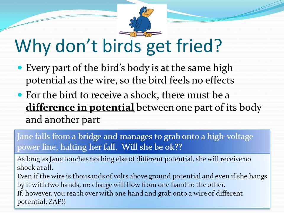 Why don't birds get fried? Every part of the bird's body is at the same high potential as the wire, so the bird feels no effects For the bird to recei