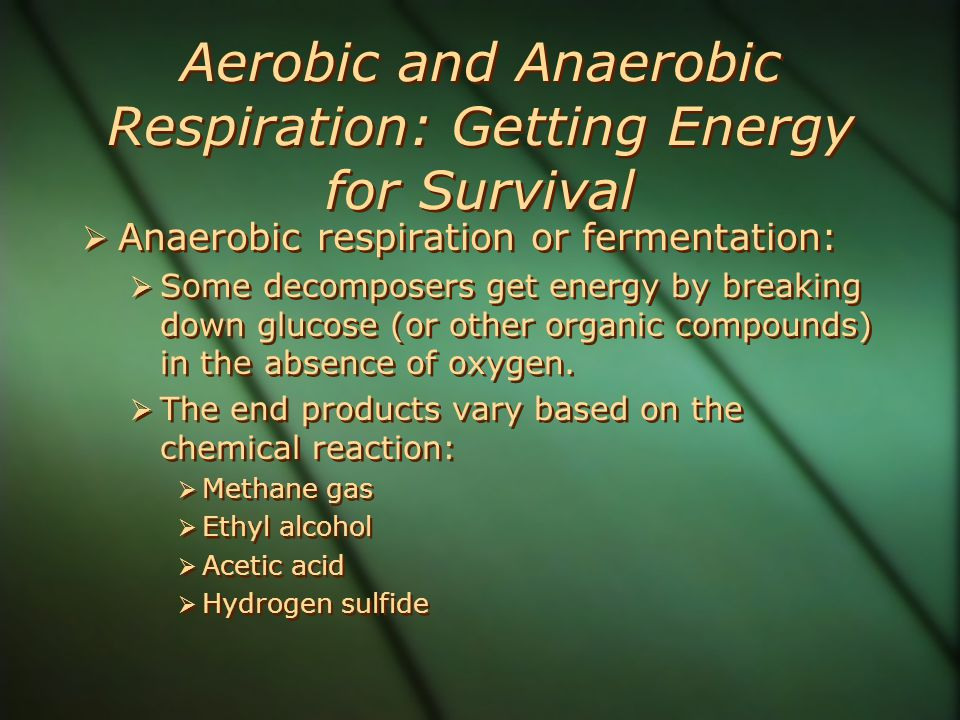 Aerobic and Anaerobic Respiration: Getting Energy for Survival  Anaerobic respiration or fermentation:  Some decomposers get energy by breaking down glucose (or other organic compounds) in the absence of oxygen.