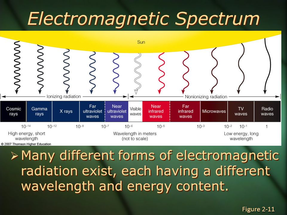 Electromagnetic Spectrum  Many different forms of electromagnetic radiation exist, each having a different wavelength and energy content.