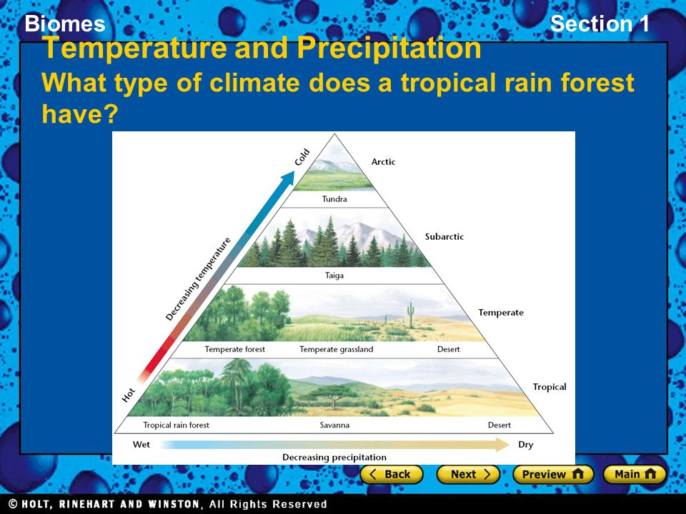 BiomesSection 1 Temperature and Precipitation What type of climate does a tropical rain forest have?