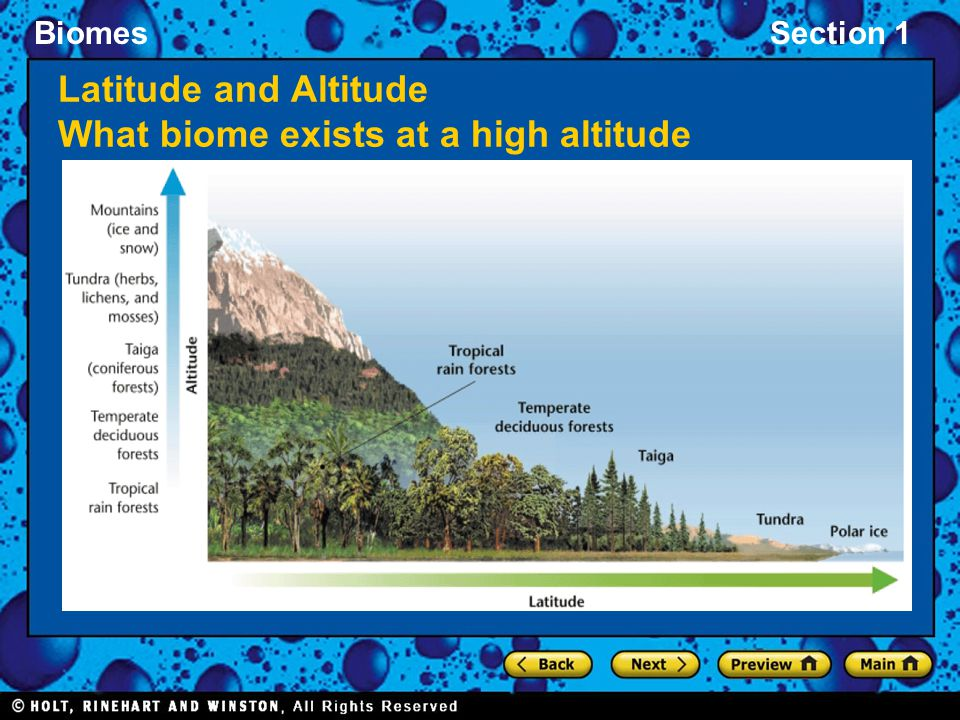 BiomesSection 1 Latitude and Altitude What biome exists at a high altitude