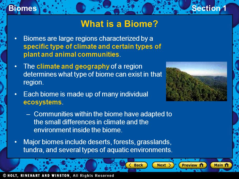 BiomesSection 1 What is a Biome? Biomes are large regions characterized by a specific type of climate and certain types of plant and animal communitie