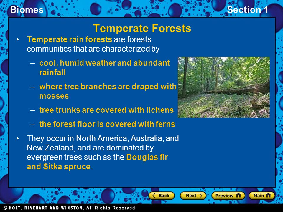 BiomesSection 1 Temperate Forests Temperate rain forests are forests communities that are characterized by –cool, humid weather and abundant rainfall