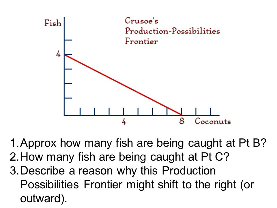 1.Approx how many fish are being caught at Pt B. 2.How many fish are being caught at Pt C.