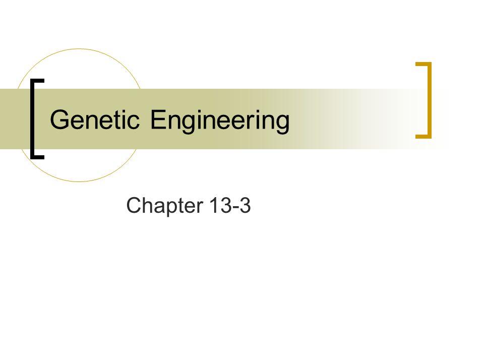 Genetic Engineering Chapter 13-3