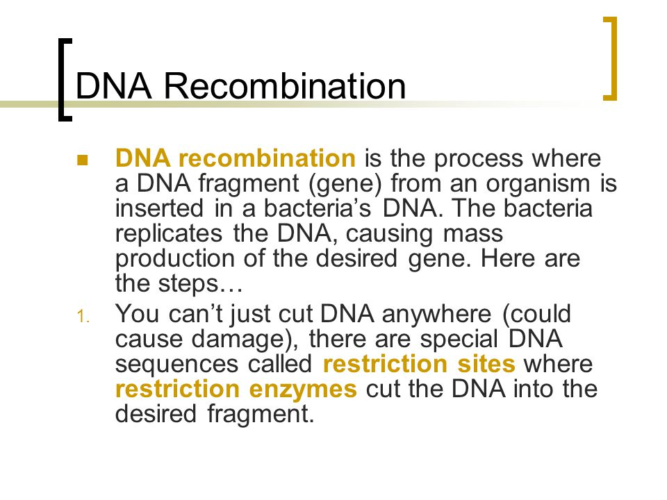 DNA Recombination DNA recombination is the process where a DNA fragment (gene) from an organism is inserted in a bacteria's DNA.