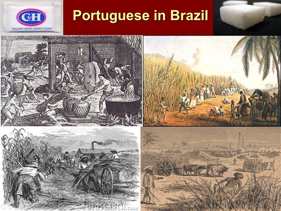 Portuguese in Brazil