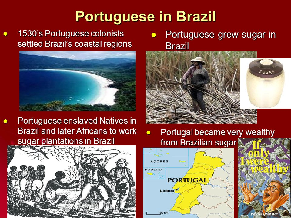 1530's Portuguese colonists settled Brazil's coastal regions 1530's Portuguese colonists settled Brazil's coastal regions Portuguese grew sugar in Bra