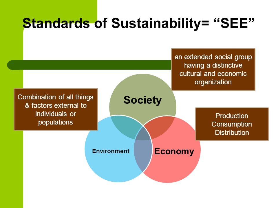 Standards of Sustainability= SEE Society Economy Environment an extended social group having a distinctive cultural and economic organization Production Consumption Distribution Combination of all things & factors external to individuals or populations