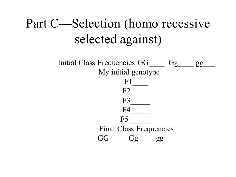 Part B—Testing an ideal Population Initial Class Frequencies GG____ Gg____ gg___ My initial genotype ___ F1____ F2_____ F3_____ F4_____ F5______ Final