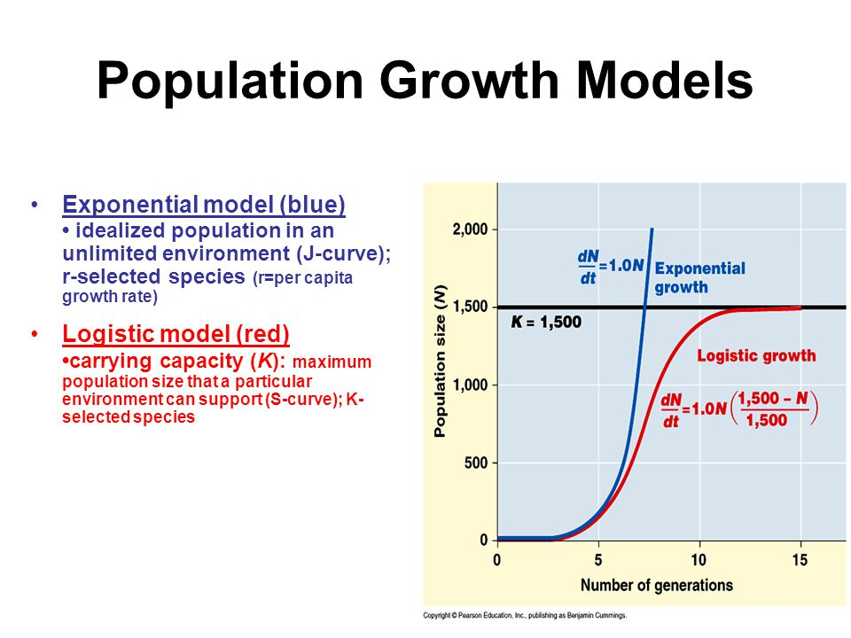Population Growth Models Exponential model (blue) idealized population in an unlimited environment (J-curve); r-selected species (r=per capita growth