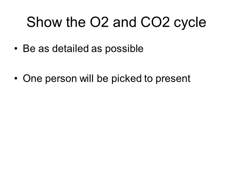 Show the O2 and CO2 cycle Be as detailed as possible One person will be picked to present