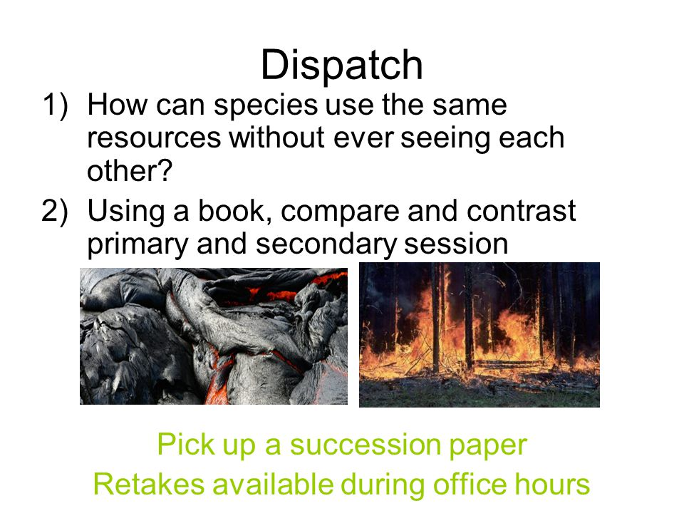Dispatch 1)How can species use the same resources without ever seeing each other.