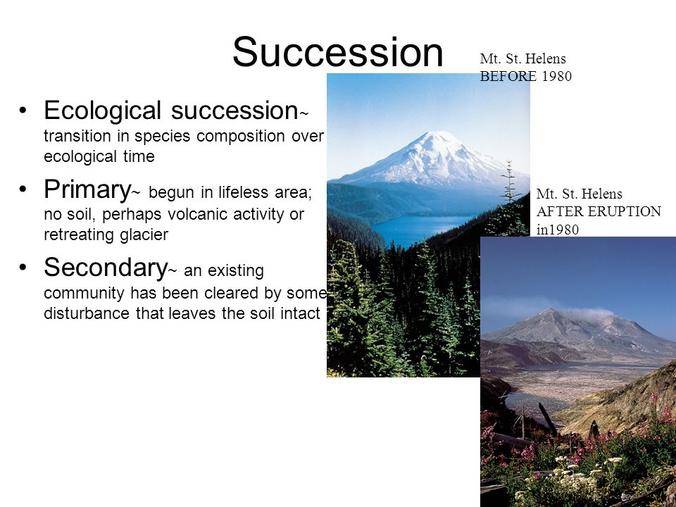 Succession Ecological succession ~ transition in species composition over ecological time Primary ~ begun in lifeless area; no soil, perhaps volcanic activity or retreating glacier Secondary ~ an existing community has been cleared by some disturbance that leaves the soil intact Mt.