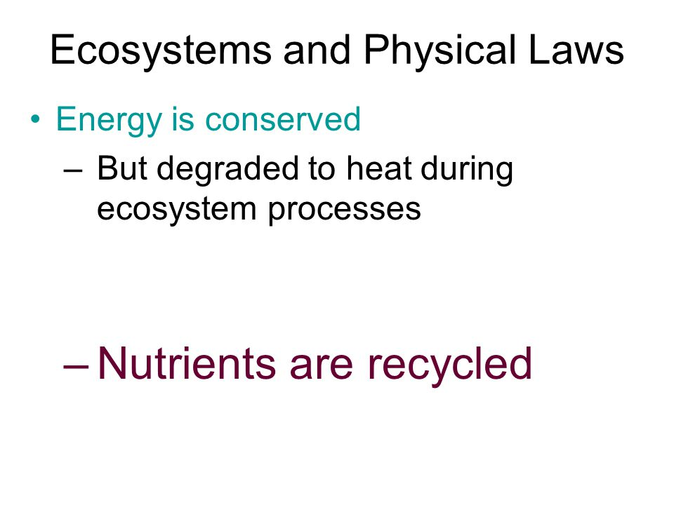 Ecosystems and Physical Laws Energy is conserved –But degraded to heat during ecosystem processes –Nutrients are recycled