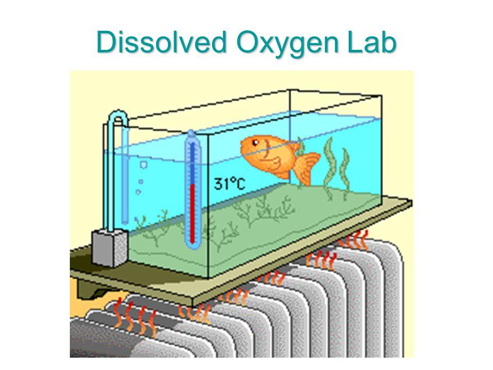 Dissolved Oxygen Lab
